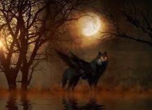 Mito del hombre lobo