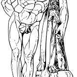 Mito de hercules